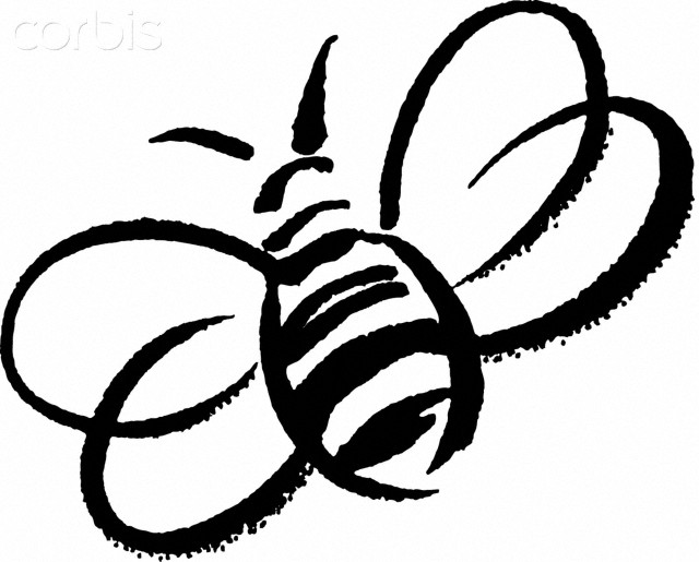 Bee  black and white bumble bee cute clip art love bees cartoon more