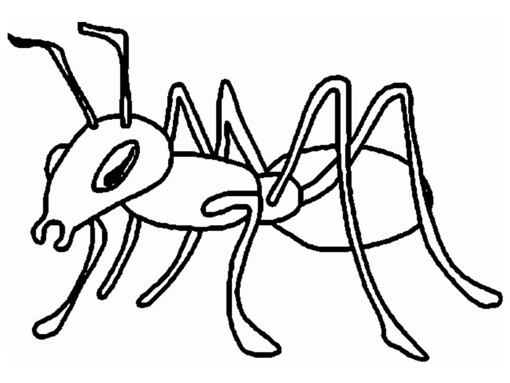 Cartoon ant clipart 2