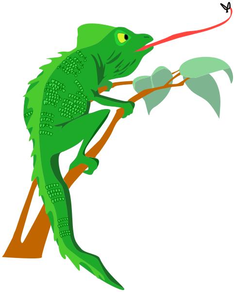 Chameleon clip art download