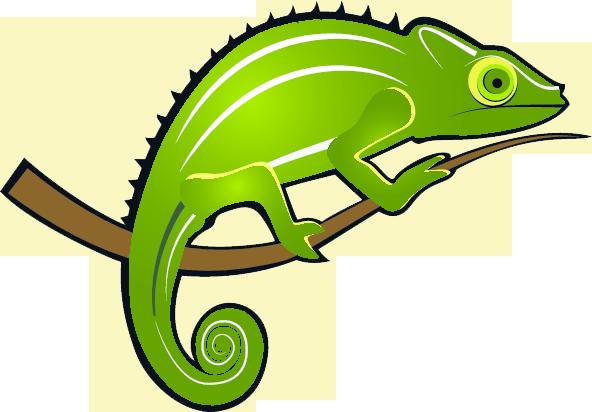 Chameleon clipart free images