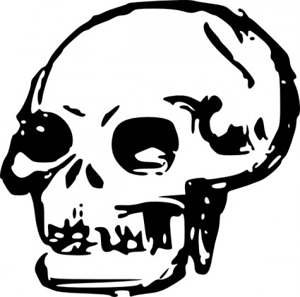 Clipart skull clipart 2