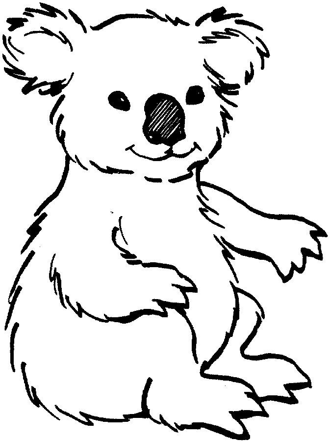 Cute koala clipart free images
