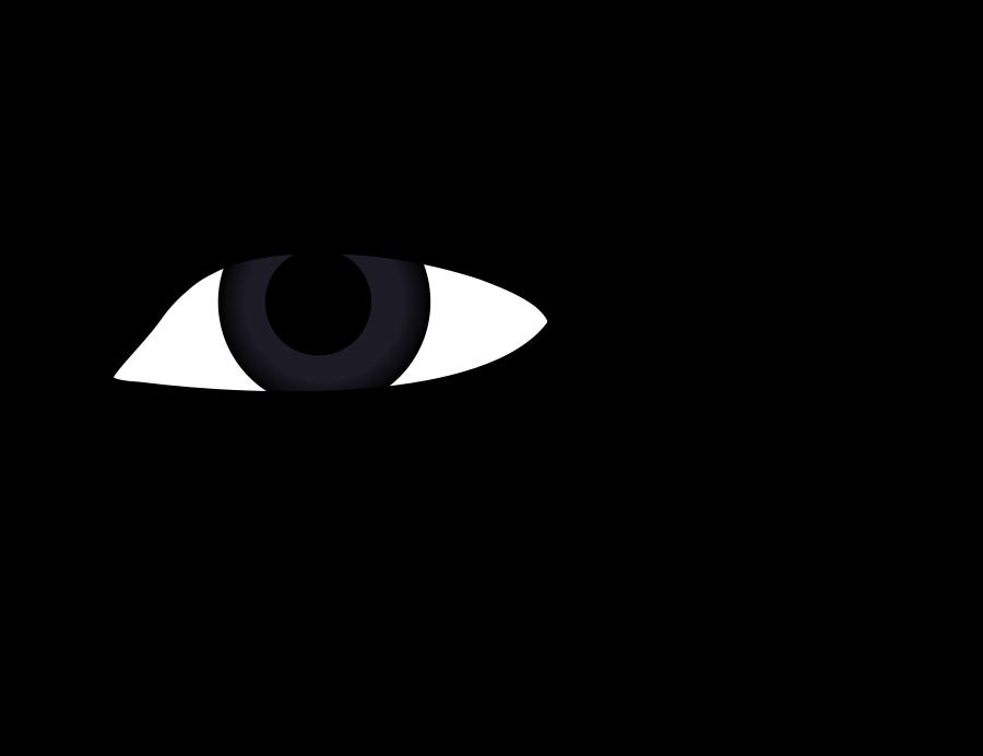 Eyeball eyes clipart free images image 3