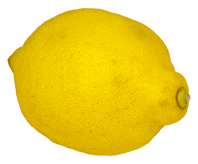 Free lemon clipart 1 page of clip art
