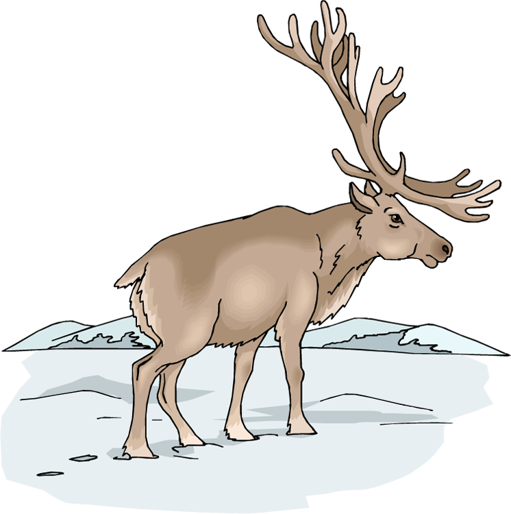 Free moose clipart 4