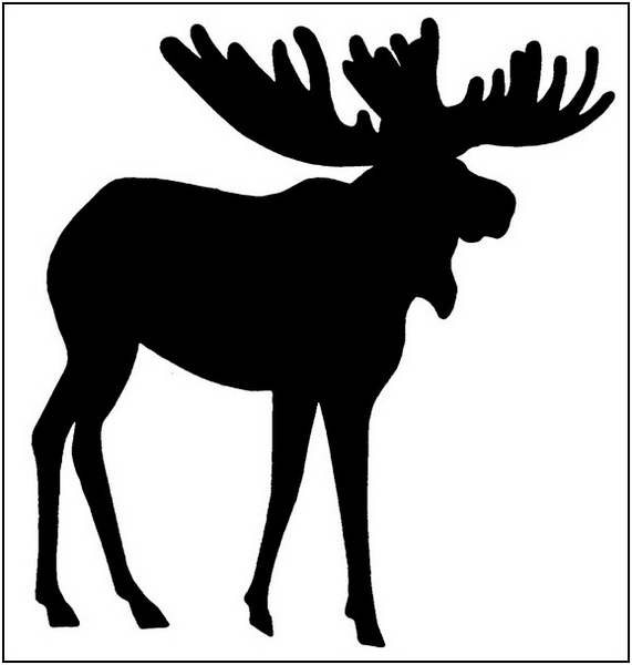 Free moose clipart 5