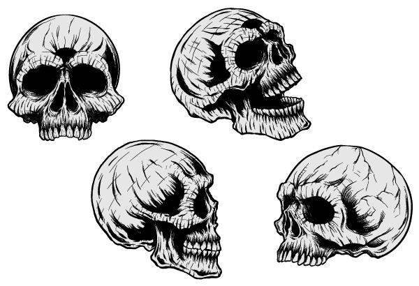 Free vector skulls clip art freevectors