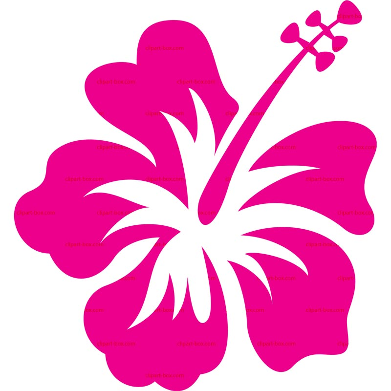 Hawaiian flower clip art flower bright hawaiian clipart 5