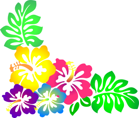 Hawaiian flower clipart border
