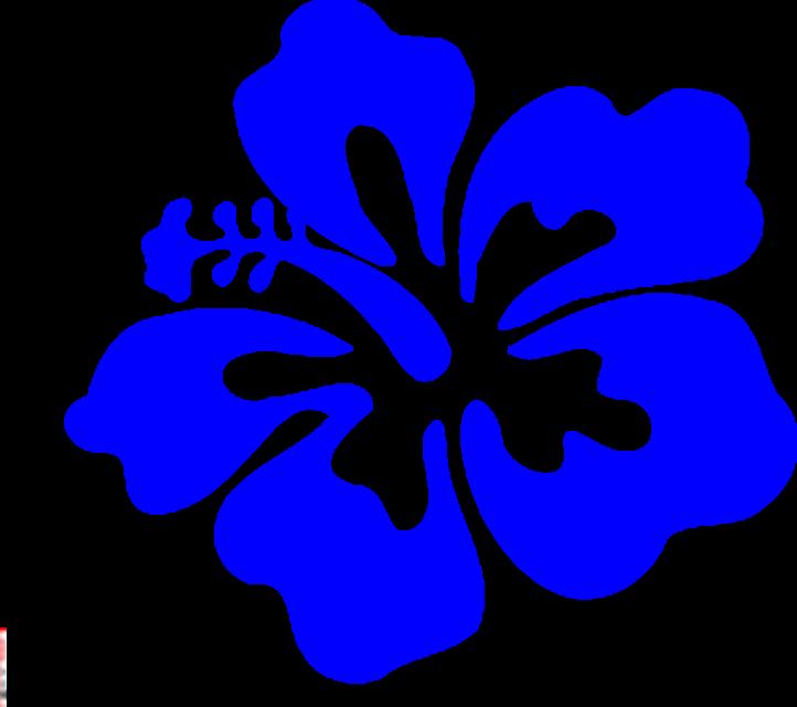 Hawaiian flower hawaii flower clipart