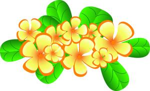 Hawaiian flower plumeria flowers clipart image tropical typical of hawaii