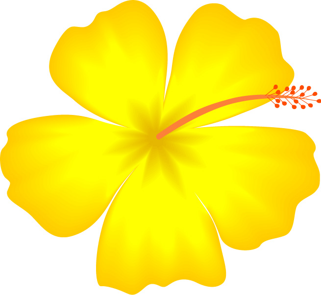 Hawaiian flowers clip art hostted 2