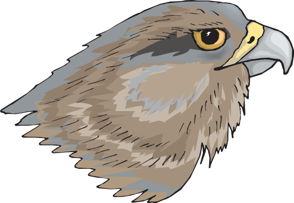 Hawk clipart 5 image 2