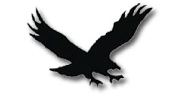 Hawk clipart 7