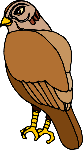 Hawk clipart 8