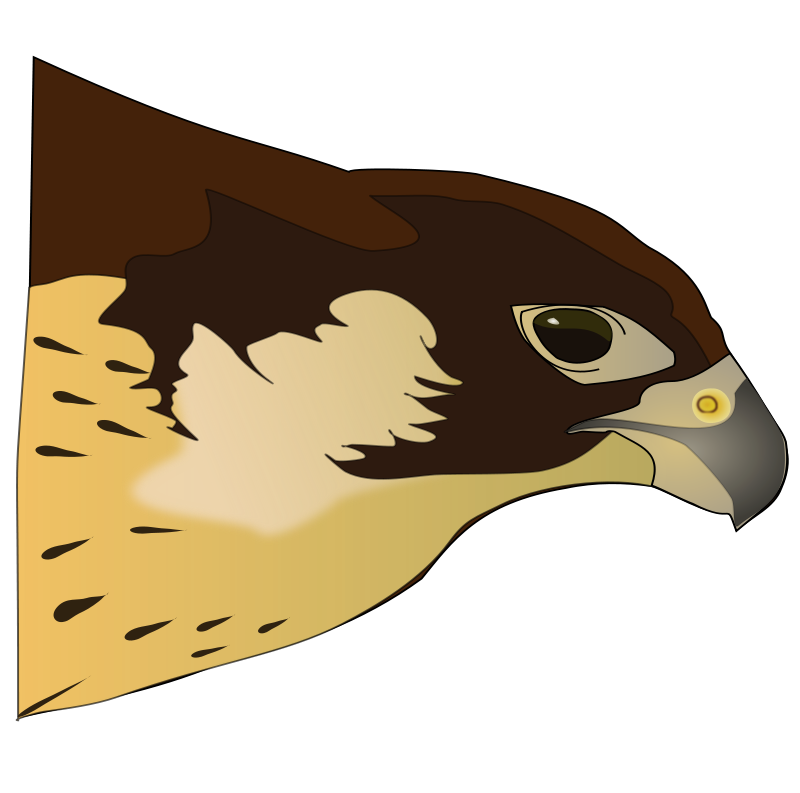 Hawk clipart image 2