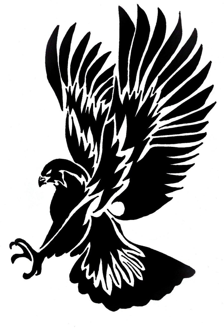 Hawk clipart image