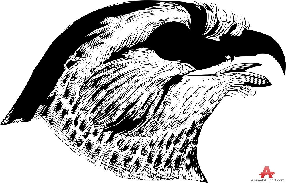 Hawk clipart stencil art free design download