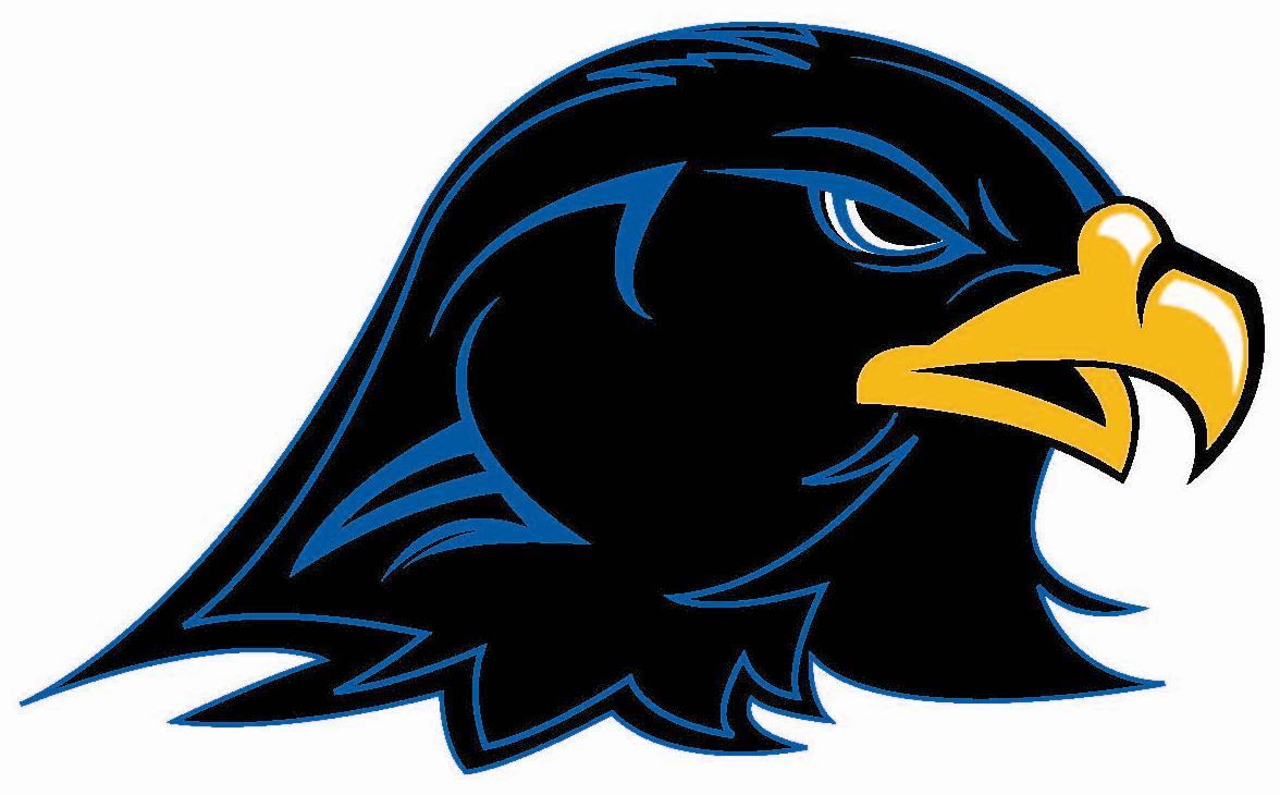 Hawk mascot clipart free images 4