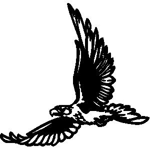 Hawk mascot clipart free images 5