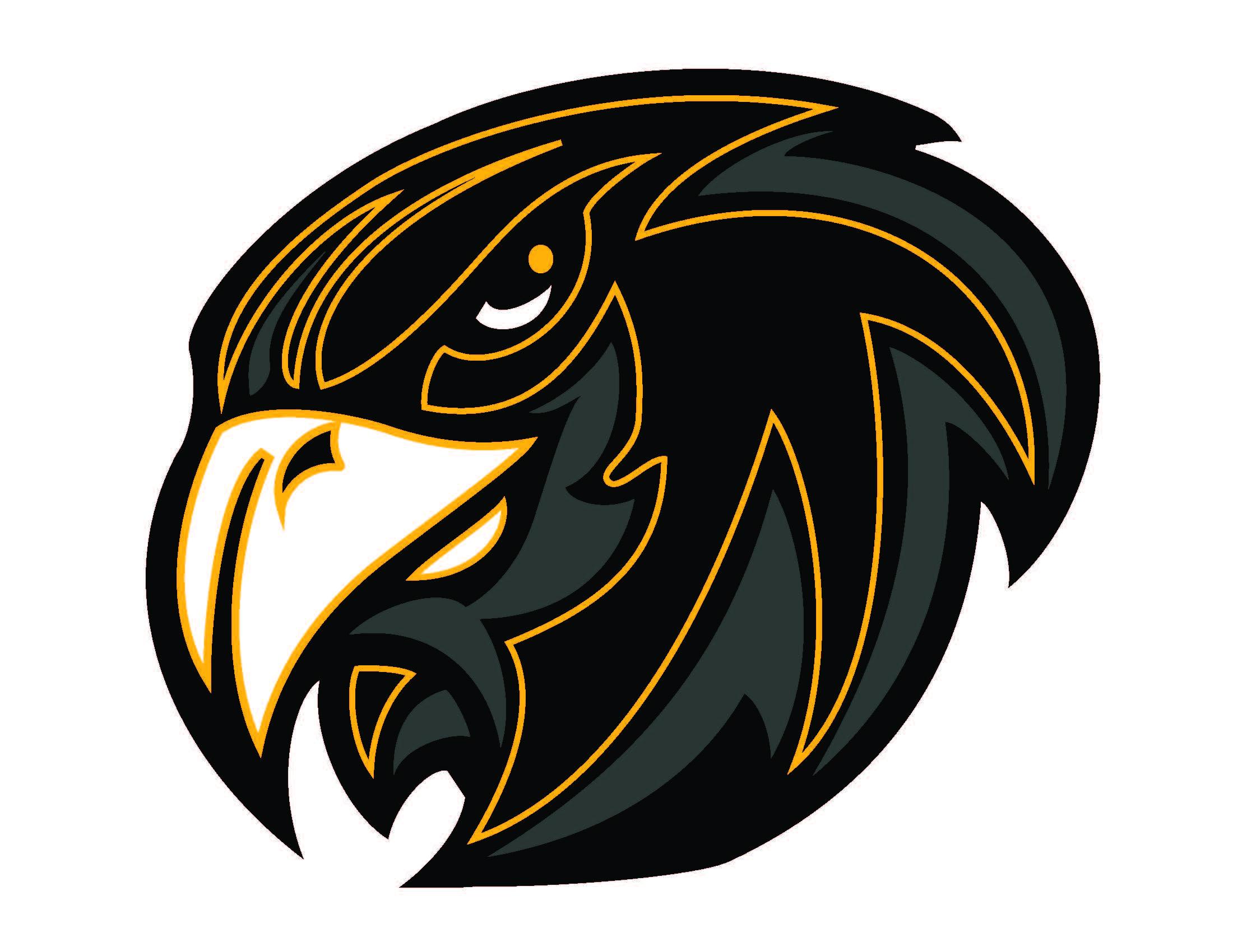 Hawk mascot clipart free images 6