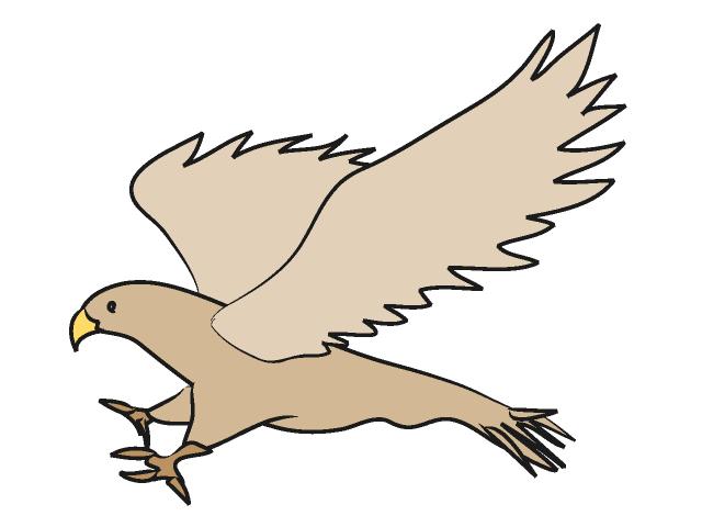 Hawk mascot clipart free images