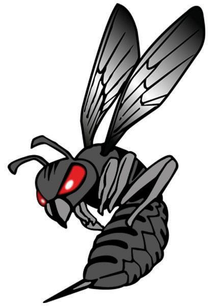 Hornet logo clipart 3