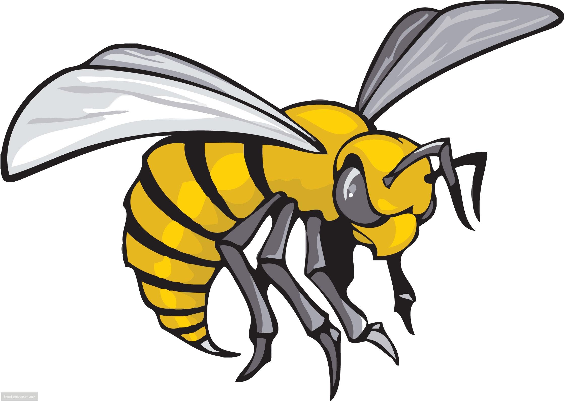 Hornet Mascot Clipart Wikiclipart