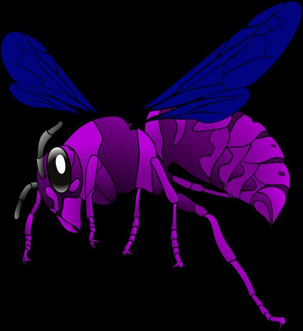 Hornet vector clip art