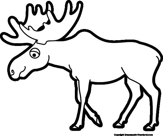 Free Moose Clipart Pictures - Clipartix