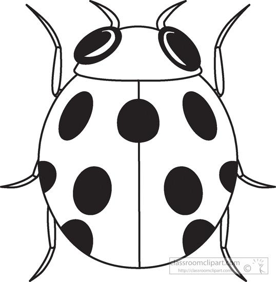Ladybug outline clipart 3
