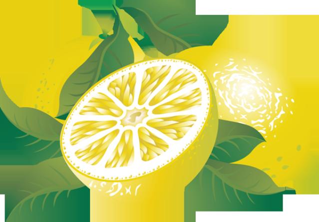 Lemon clip art free clipart images 2 3