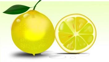 Lemon clip art free clipart images 2 clipartbold 4