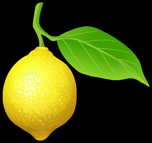 Lemon clip art web clipart