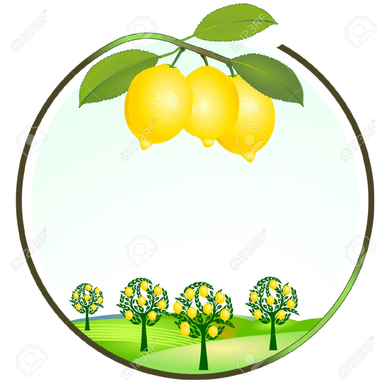 Lemon clipart kiaavto