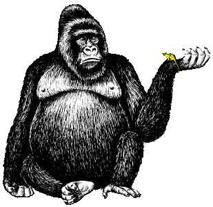 Monkey  black and white free monkey clipart