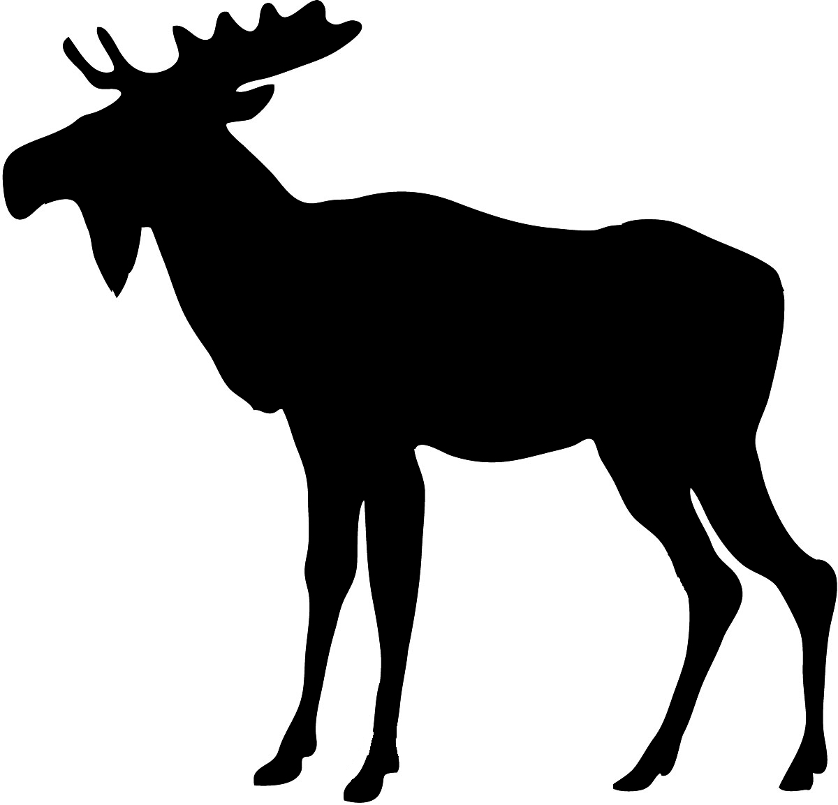 Moose clipart 12