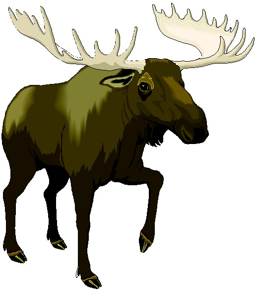 Moose clipart 3