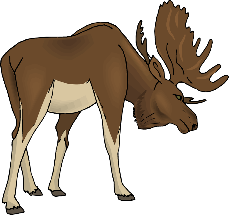 Moose clipart cartoon free images 4
