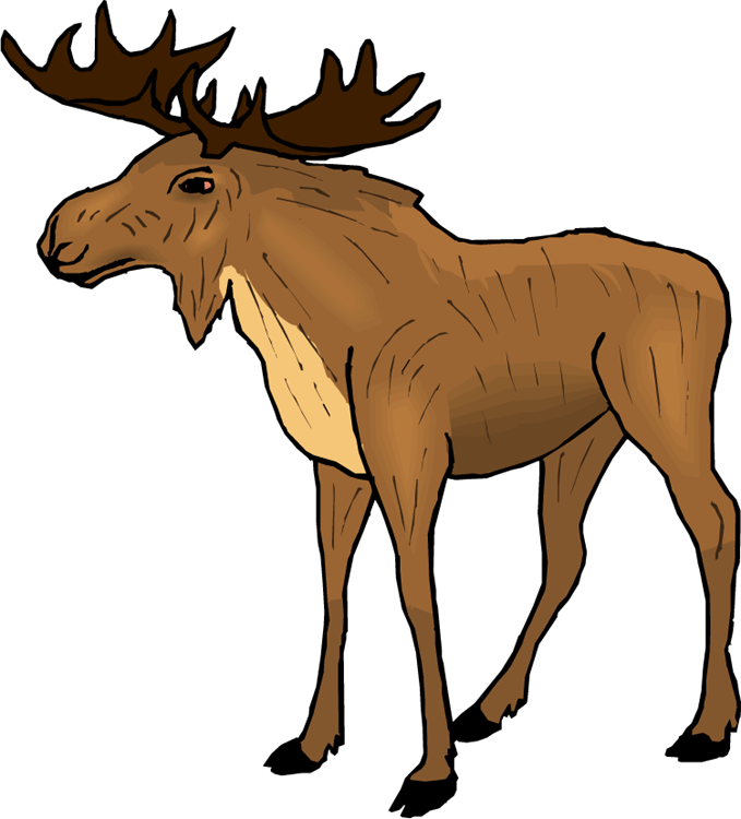 Moose clipart cartoon free images