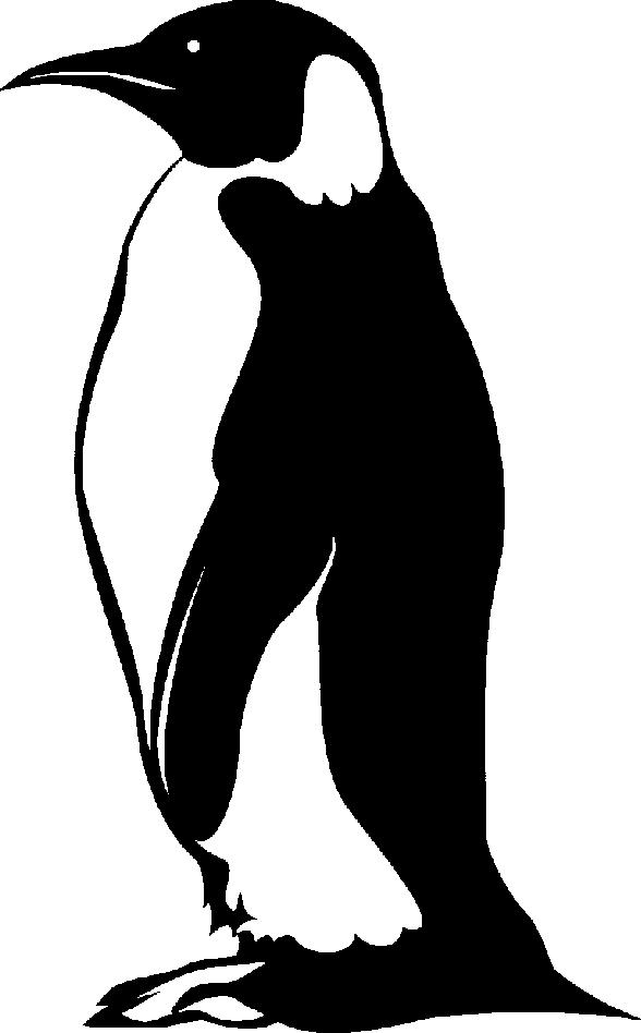 Penguin  black and white penguin black and white clip art clipart 3