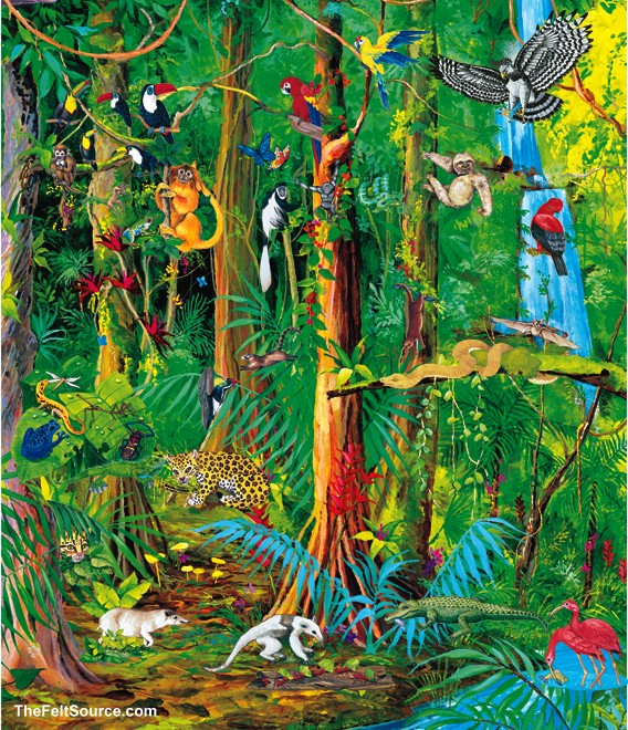 Rainforest art related keywords clipart