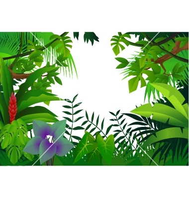 Rainforest border clipart 4