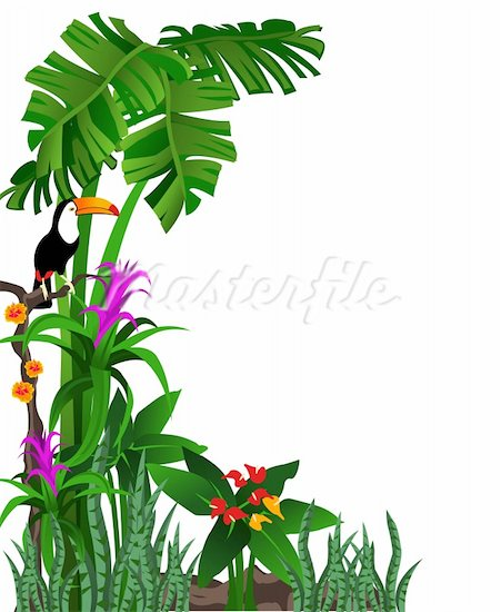 Rainforest border clipart