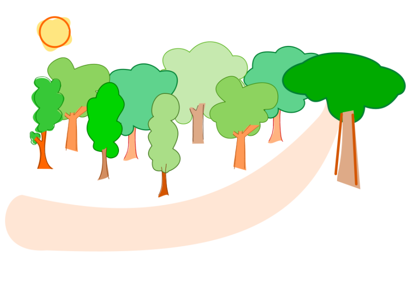 Rainforest clipart 12