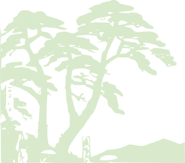 Rainforest clipart hostted