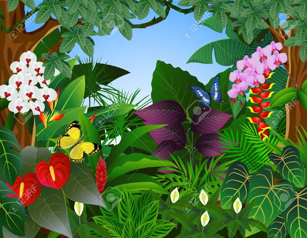 Rainforest leaves clipart webnode