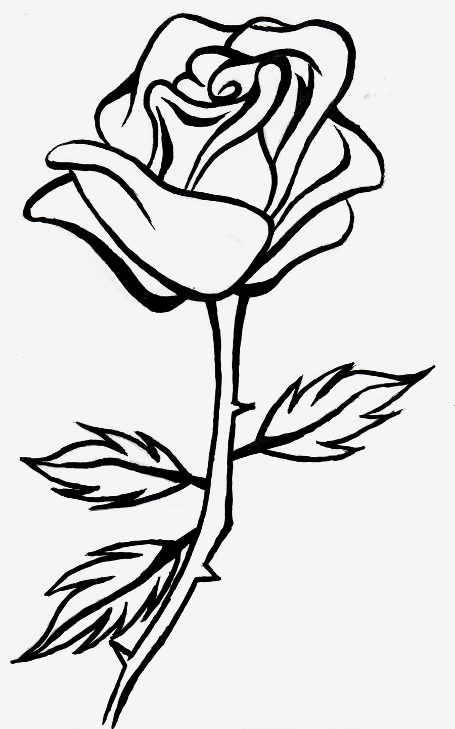 Rose  black and white free roses clip art pictures