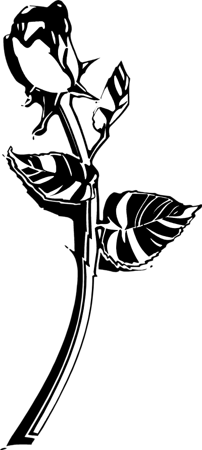 Rose  black and white roses clip art black and white clipart