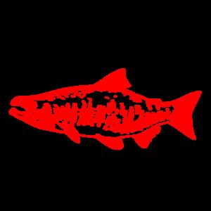 Salmon clip art images free clipart 4